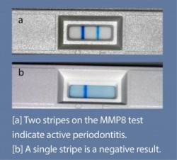 mmp8-test