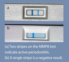 MMP8 test.jpg